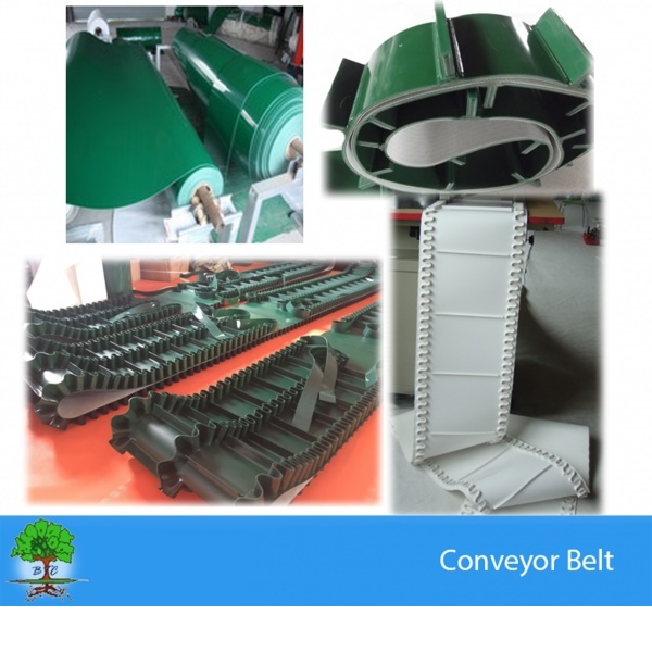 Polyester conveyor belts- Food conveyor belts